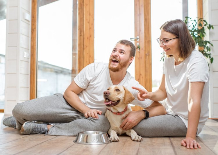 How To Prepare Your Family for a Dog
