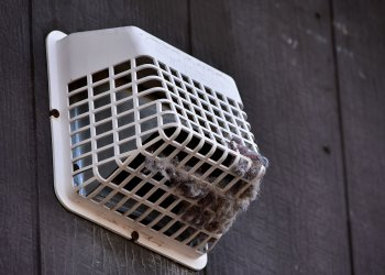 What You Can Do To Keep Your Dryer Vent Clean