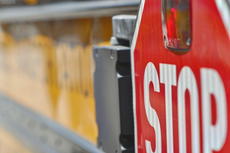 Steps To Become a Professional School Bus Driver